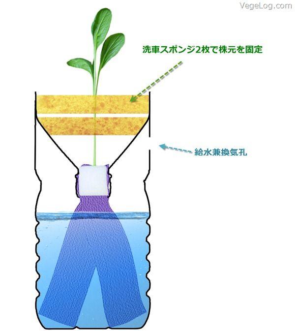 ペットボトル水耕栽培装置 | For the Home | 植物栽培、水耕栽培 ...
