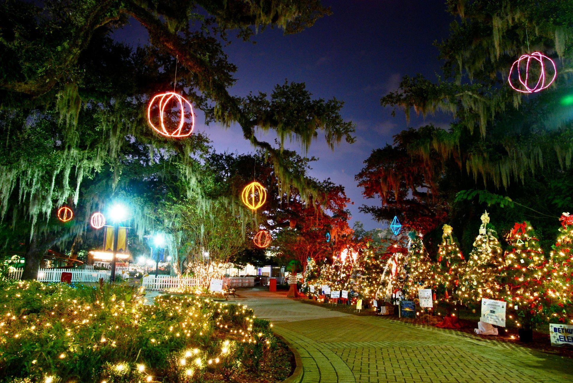 the oaks in city park new orleans celebration in the oaks city parks winter wonderland southern new orleans the big easy pinterest - Celebration Christmas Lights