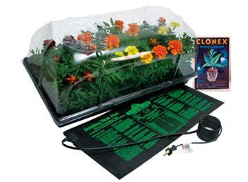 Amazon Com Hydrofarm Ck64060 Hot House With Heat Mat 400 x 300