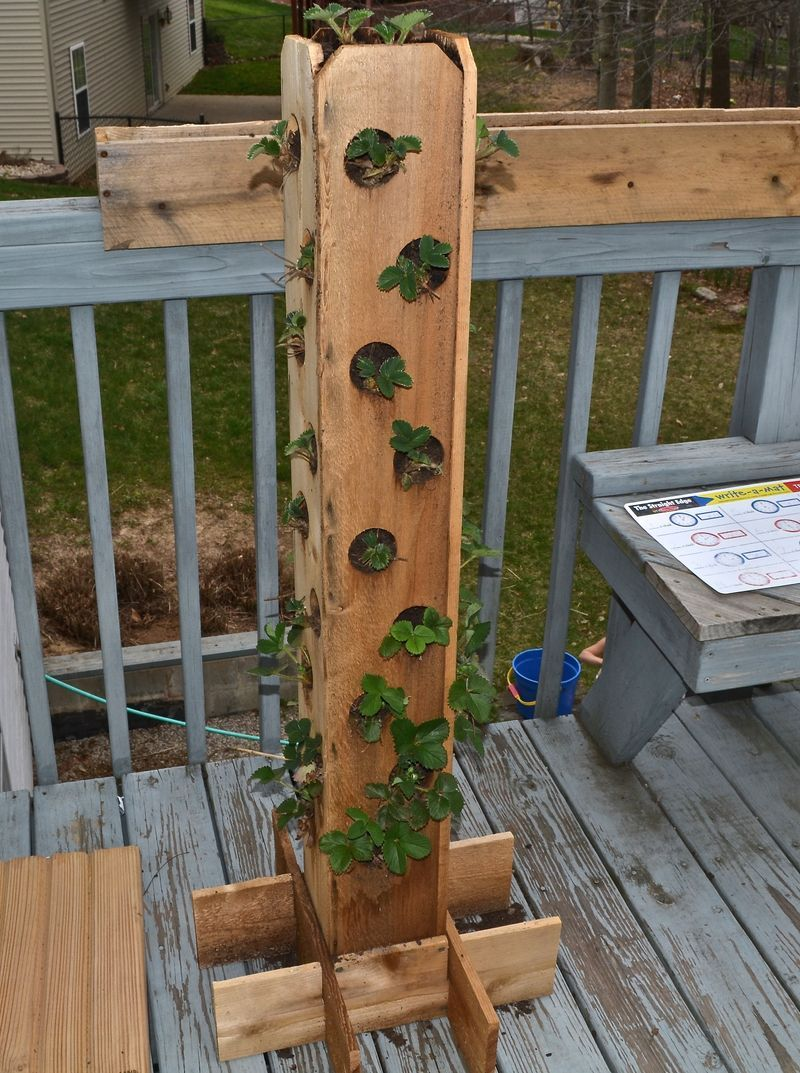 Could add this to our fence posts. | garden | Pinterest | Strawberry ...