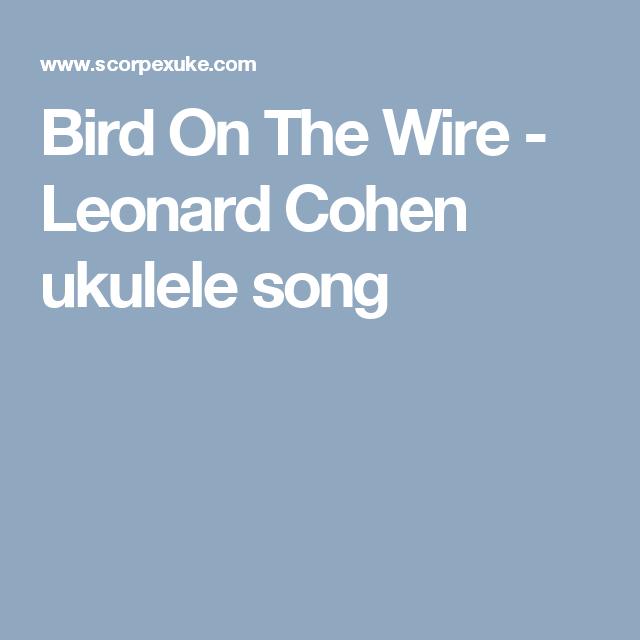 Bird On The Wire Leonard Cohen Ukulele Song Uke It Pinterest