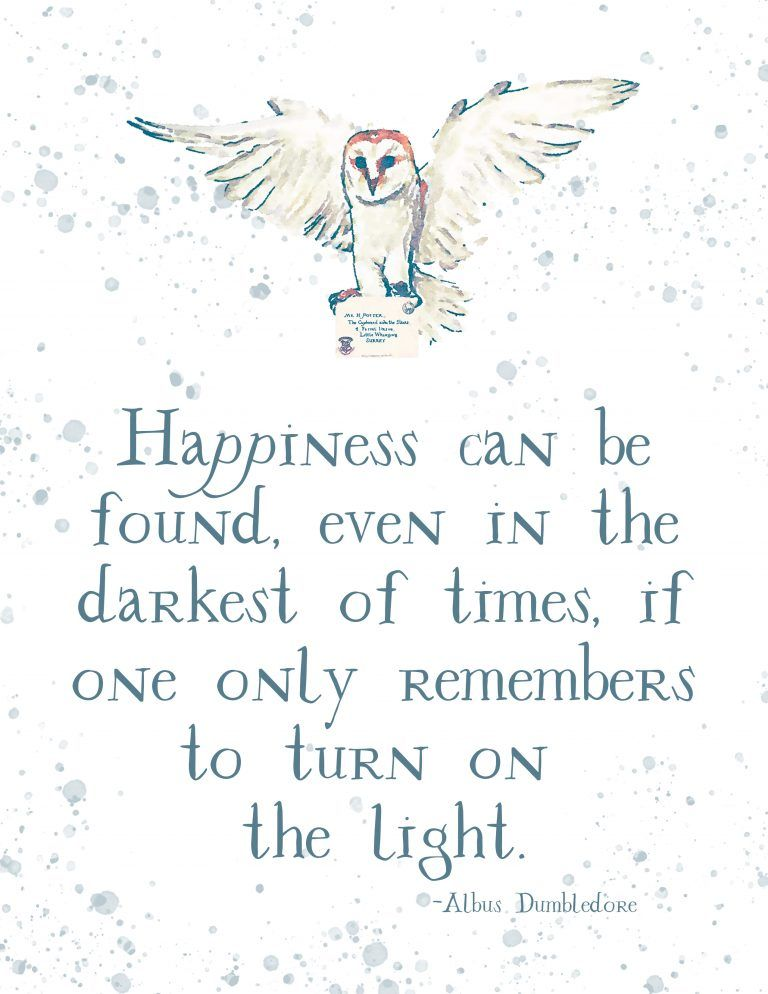 Harry Potter Quote from Albus Dumbledore