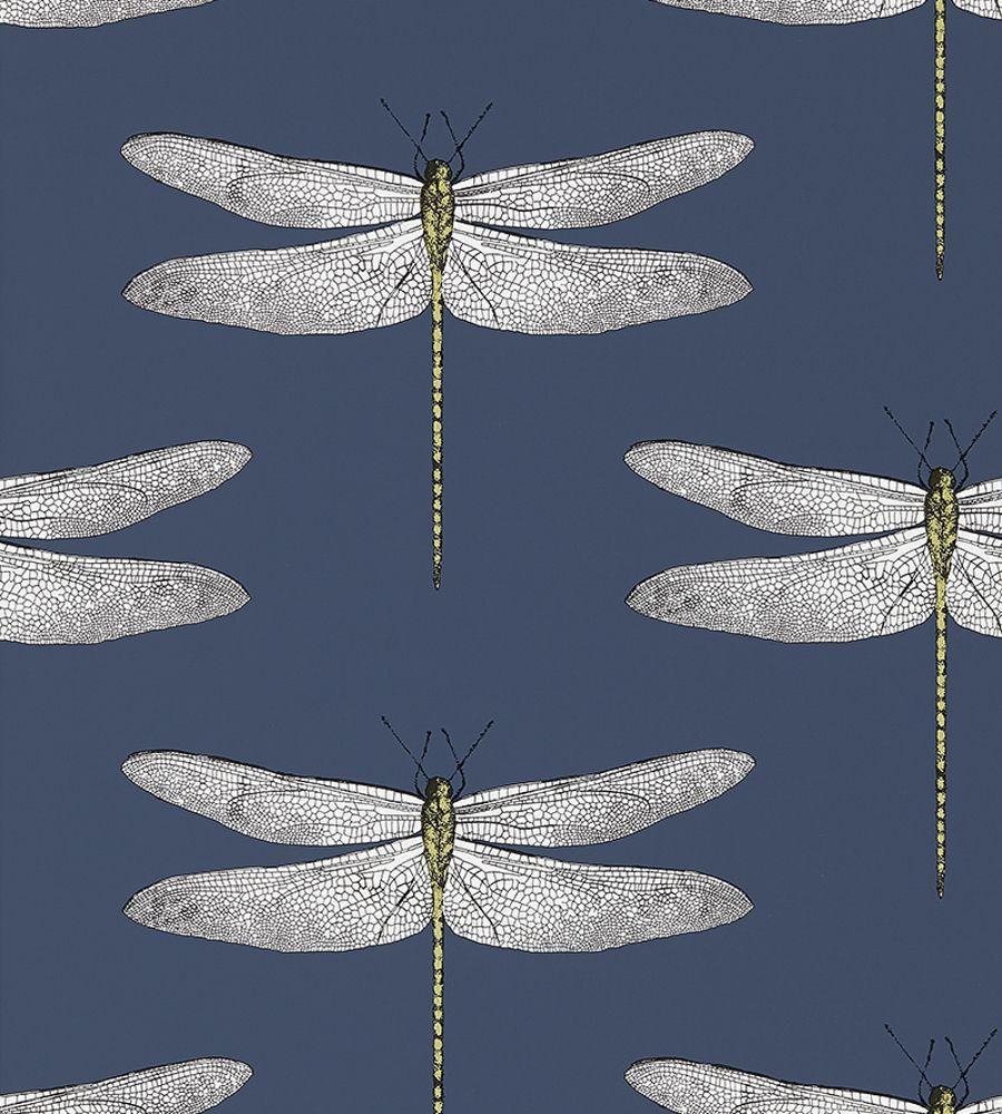 Demoiselle Harlequin Wallpaper Dragonfly Wallpaper
