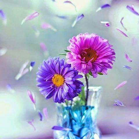 Quando a alma está feliz  e agradecida pelo que recebemos  de bom na vida, a prosperidade cresce,  a saúde melhora, as amizades aumentam,  o mundo fica de bem com você porque  o mundo exterior reflete nosso mundo interior Mahatma Gandhi