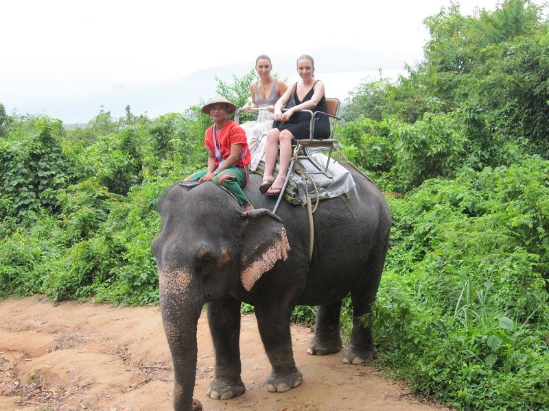 dating in thai culture elephants