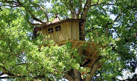 Superb Chambres Du0027hôtes Insolites, Cabane Dans Les Arbres, En France