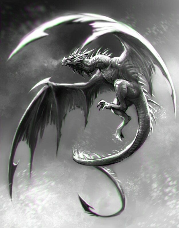 white and grey dragon | tattoo | pinterest | dragon, dragon art and