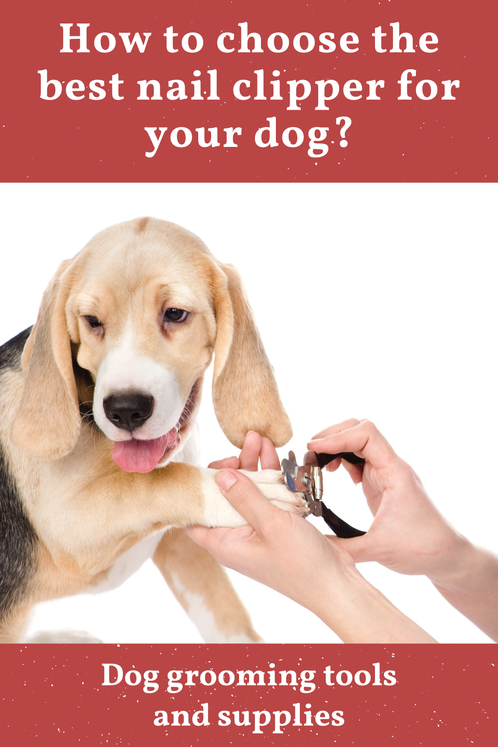 How To Choose The Best Nail Clipper For Your Dog In 2020 Dog Nails Dog Grooming Tips Trimming Dog Nails