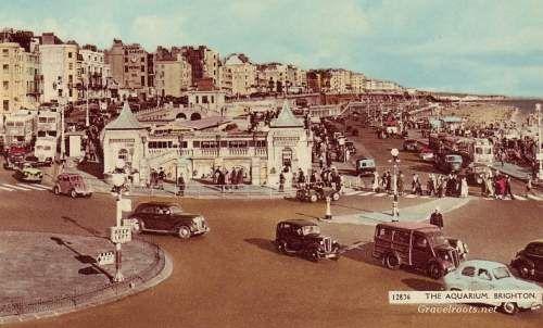 Brighton Aquarium c. 1950s - early 60s postcard in house