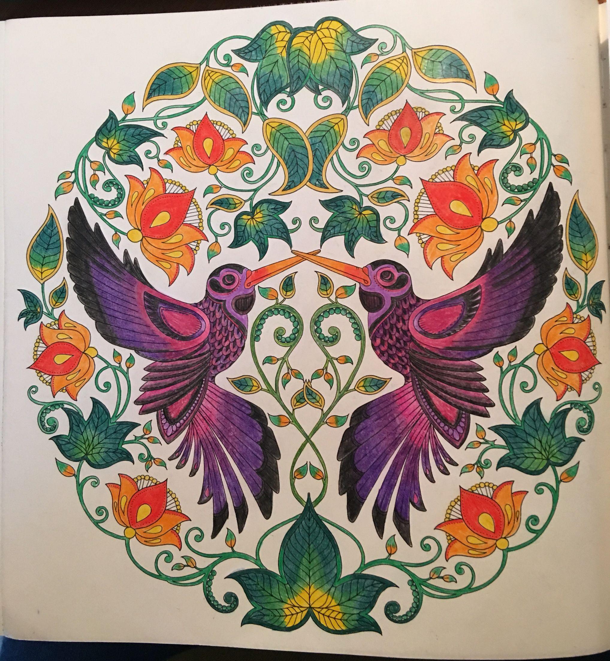 Secret Garden By Johanna Basford Hummingbirds Coloring