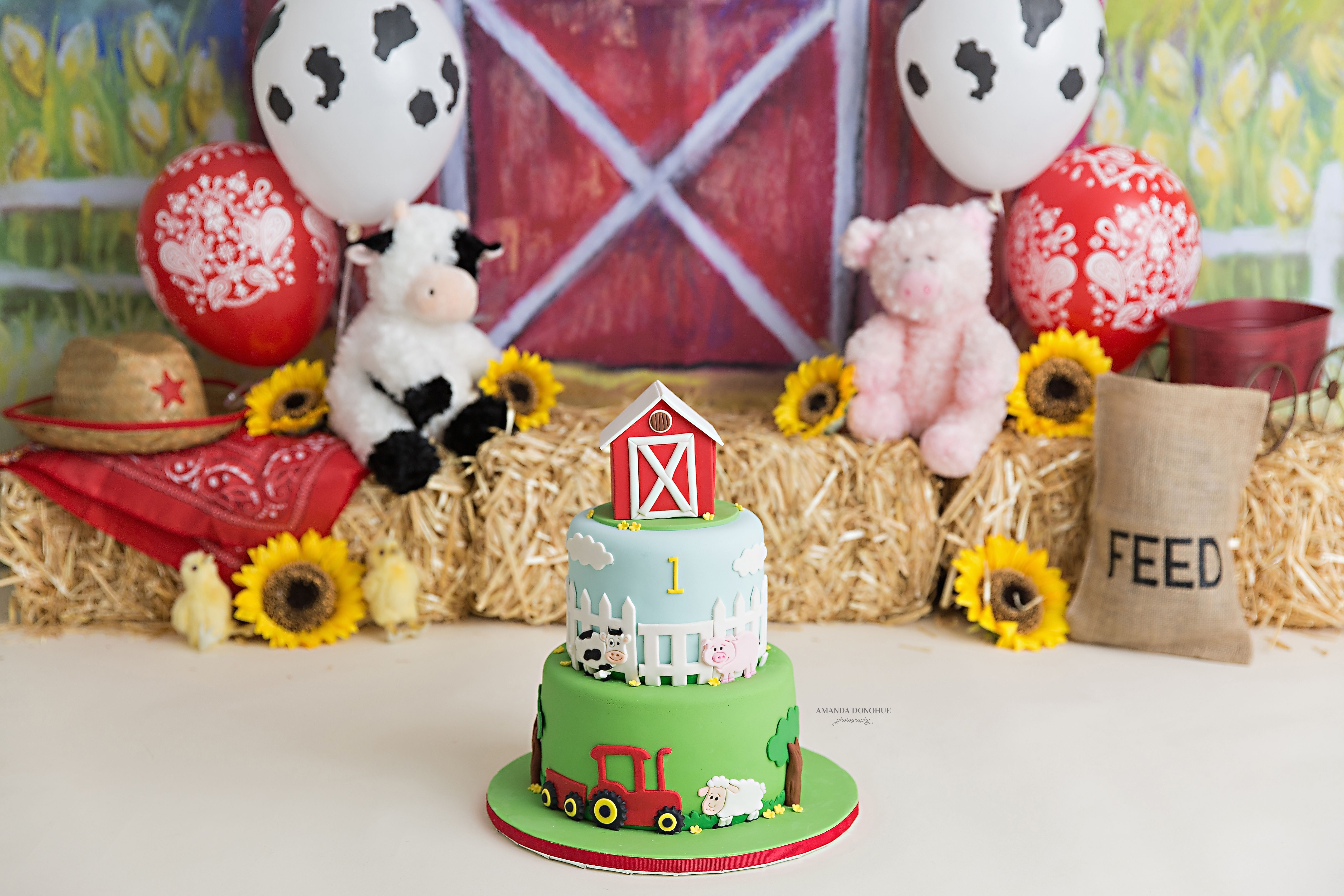 Cute Farm Cake Smash Farm First Birthday Theme With Images