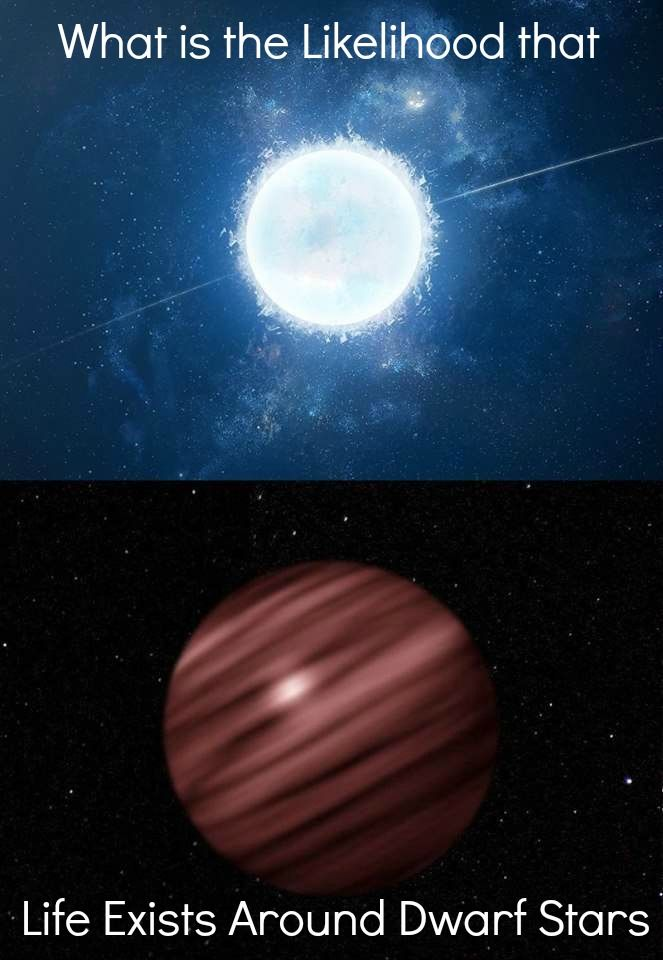 What is the Likelihood of Life Around Dwarf Stars In the ...