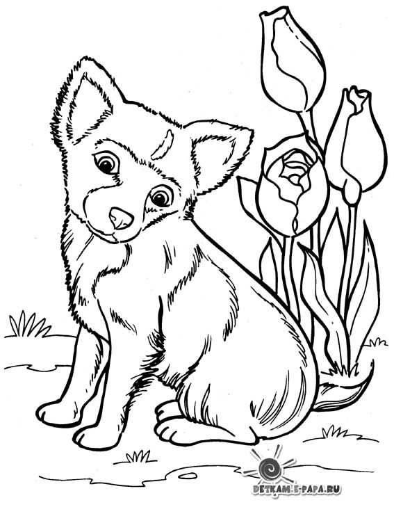 Free Printable Coloring Pages Puppy Coloring Pages Dog Coloring Page Horse Coloring Pages