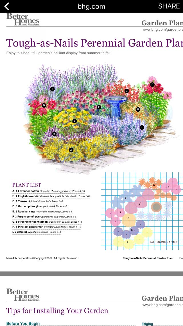 Tough As Nails Perennial Garden Plan Hardyperennial Zone3