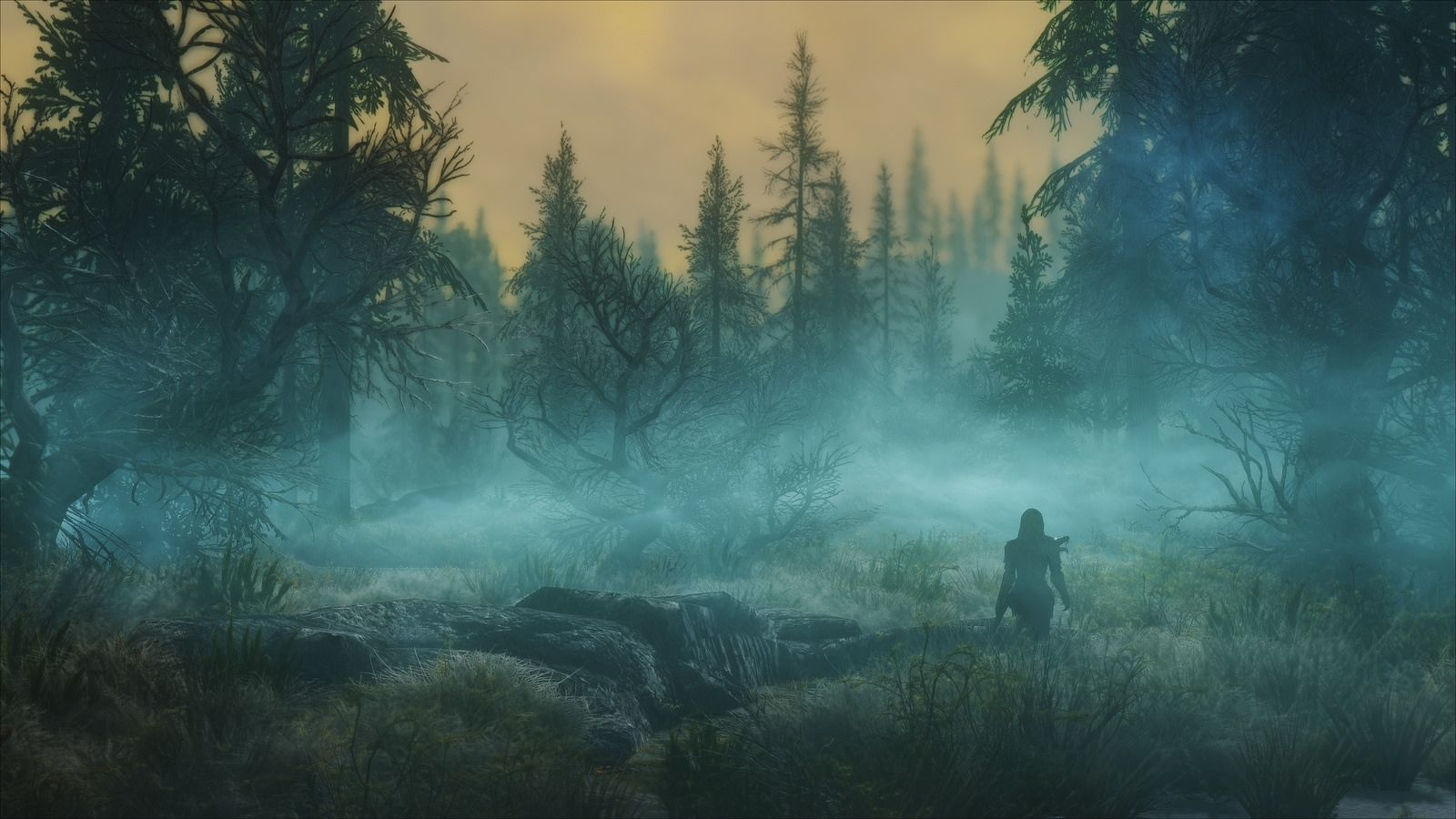 Mystic Forest Scenery Wallpaper Background Images Skyrim