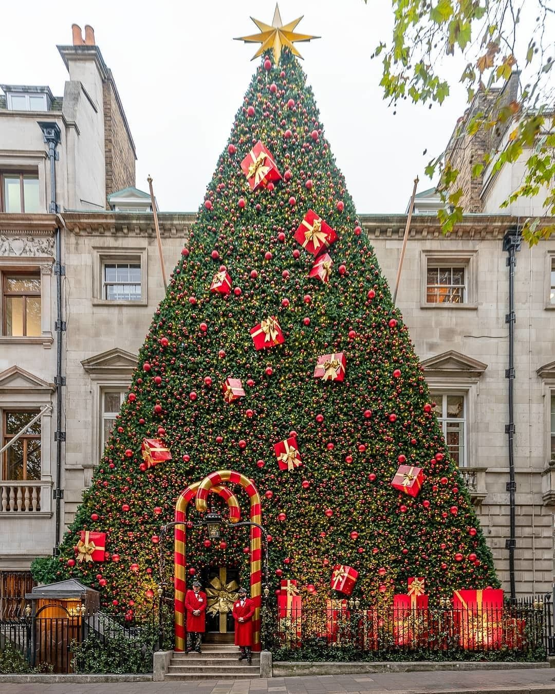 Secret London On Instagram The Best Christmas Tree So Far This Year Has Got To Be This Magical Ent London Christmas Cool Christmas Trees Funny Christmas Tree