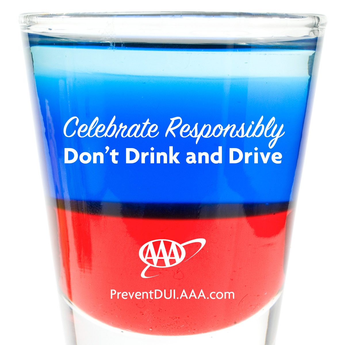 For the public for Designated driver service business plan