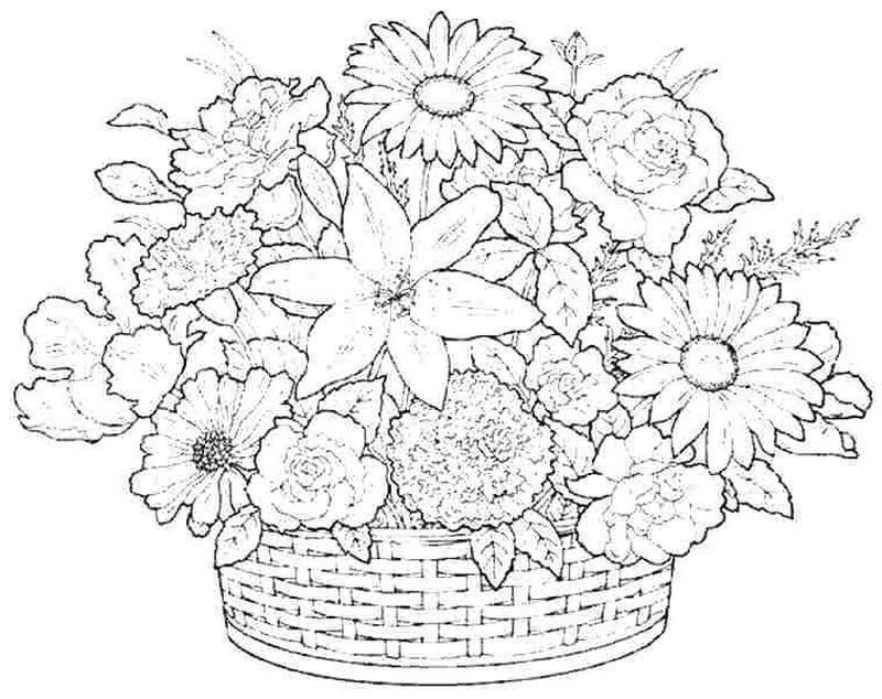 Ausmalbilder Blumen Und Schmetterlinge
