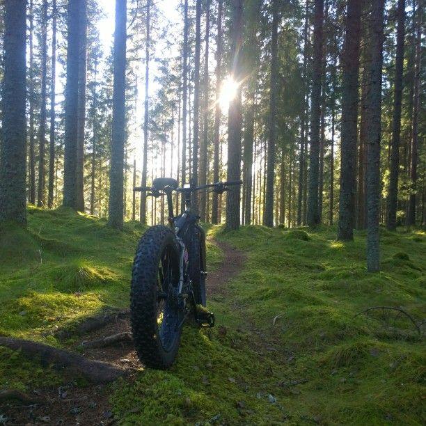 #Fatbike #Surly #Surlybikes #Autumn #Østmarka #Visitoslo #Visitnorway #utno #Terrengsykkel #Landscape #Adventure #Mtb #singeltrack #Photo #Norwegian #IG_Myshot