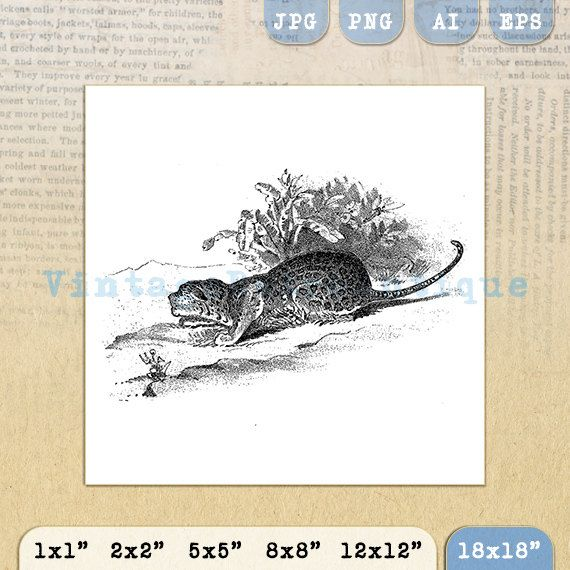 Cheetah Graphic Digital Printable Wild Cat by VintageRetroAntique