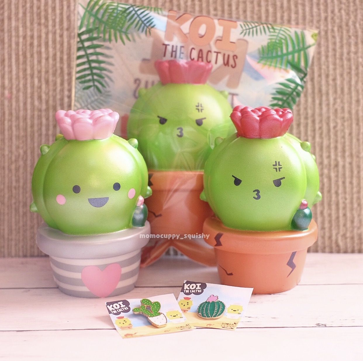 Squishies for sale - Cactus Squishies Cute Squishies Shop Buy Online
