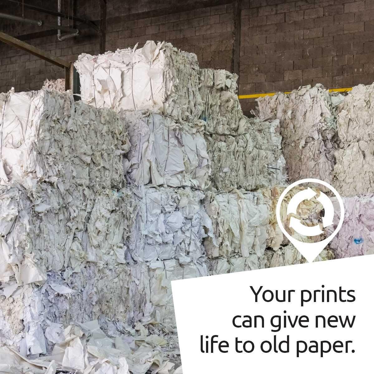 48+ Paper craft stores brisbane ideas