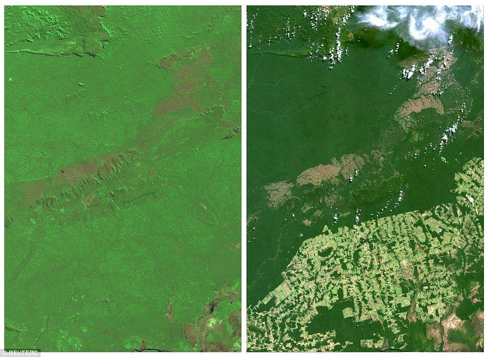 Images Show Destruction Of Brazils Amazon Rainforest