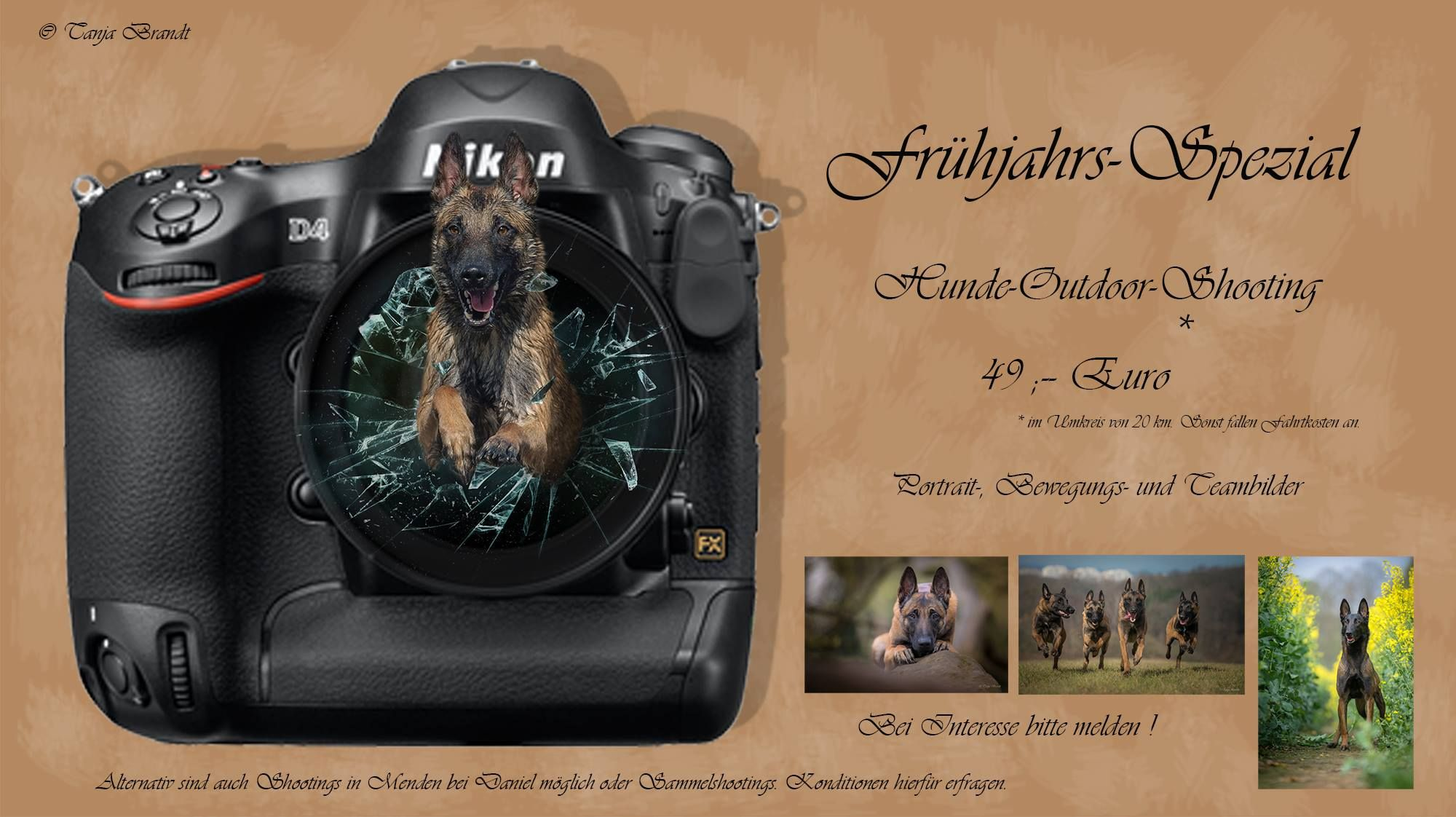 check out her facebook page for amazing pictures of malinois and other dogs and wildlife shots. She does amazing work!