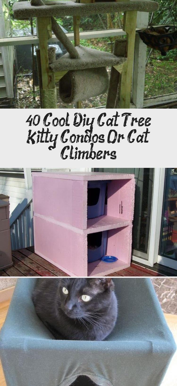 40 Cool Diy Cat Tree Kitty Condos Or Cat Climbers Cat