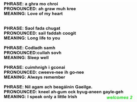 Image result for irish gaelic phrases new colossus pinterest image result for irish gaelic phrases m4hsunfo