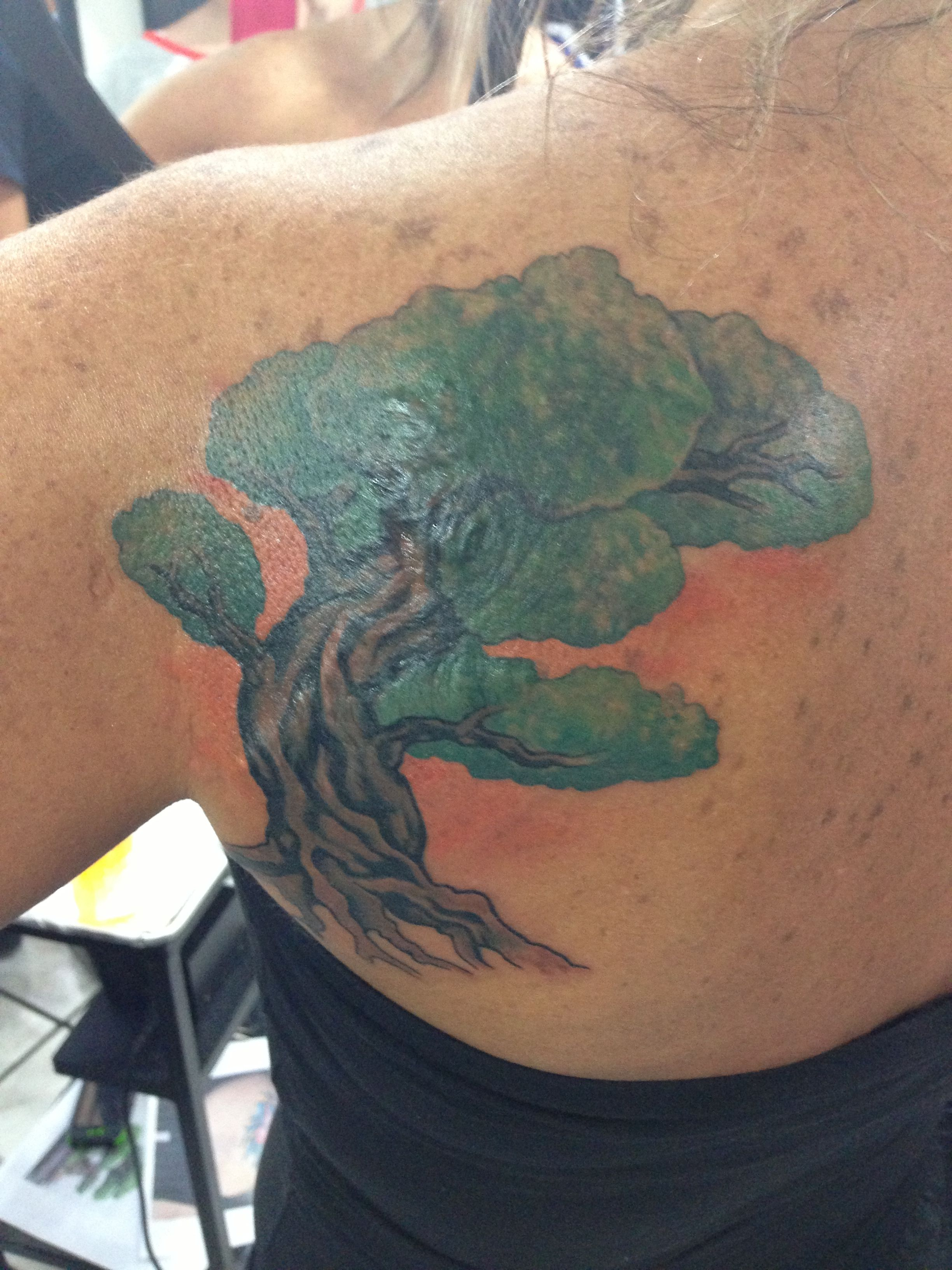 Small Bonsai Tattoo: Covering Up An Old Tattoo And A Scar With A Bonsai Tree