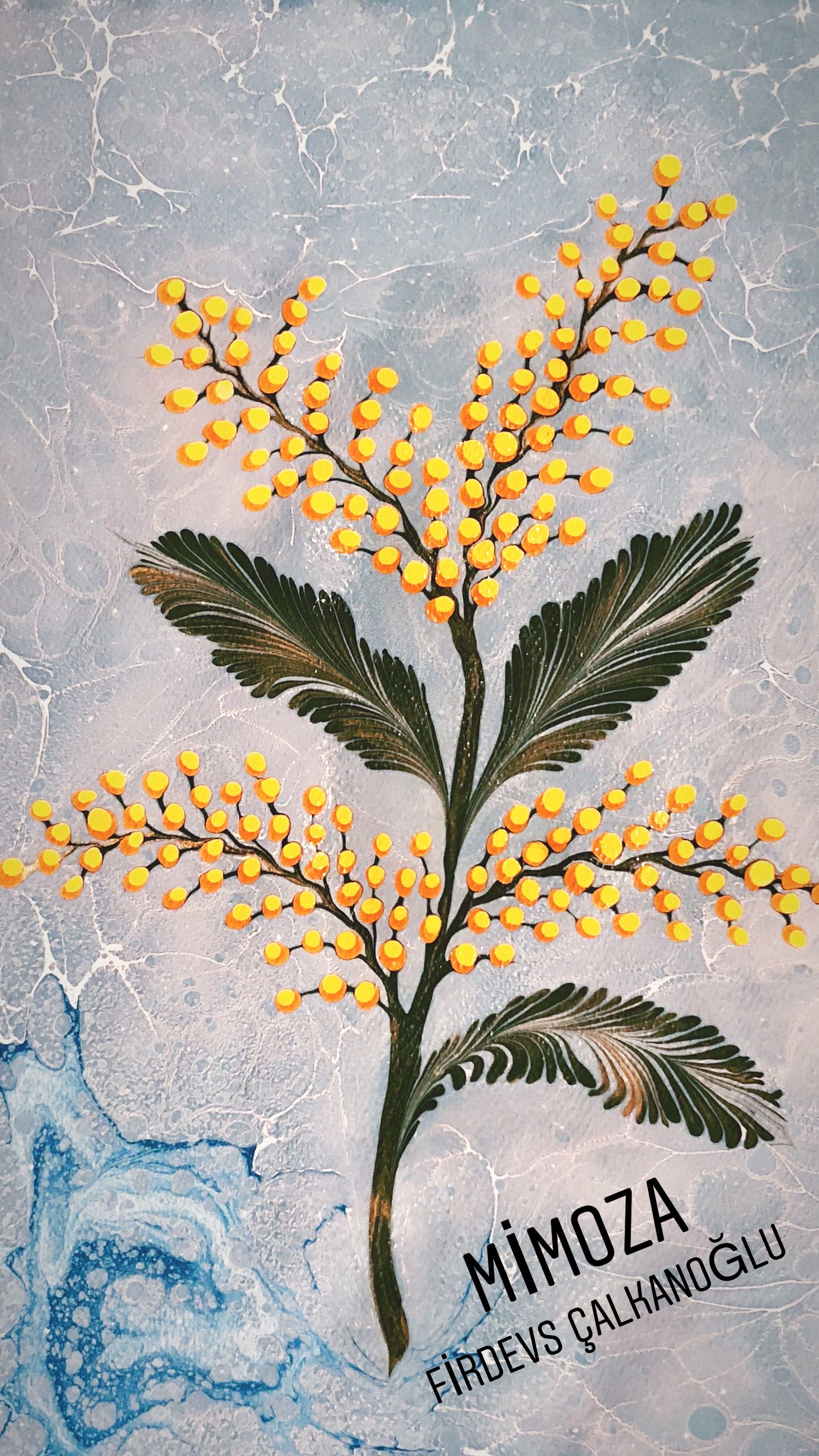 Mimosa Flower Marbling Artist Firdevs Calkanoglu Resim Sanati Cizimler Sanat