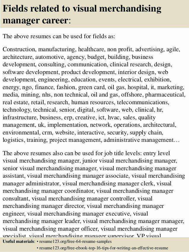 25 Visual Merchandising Resume Samples in 2020