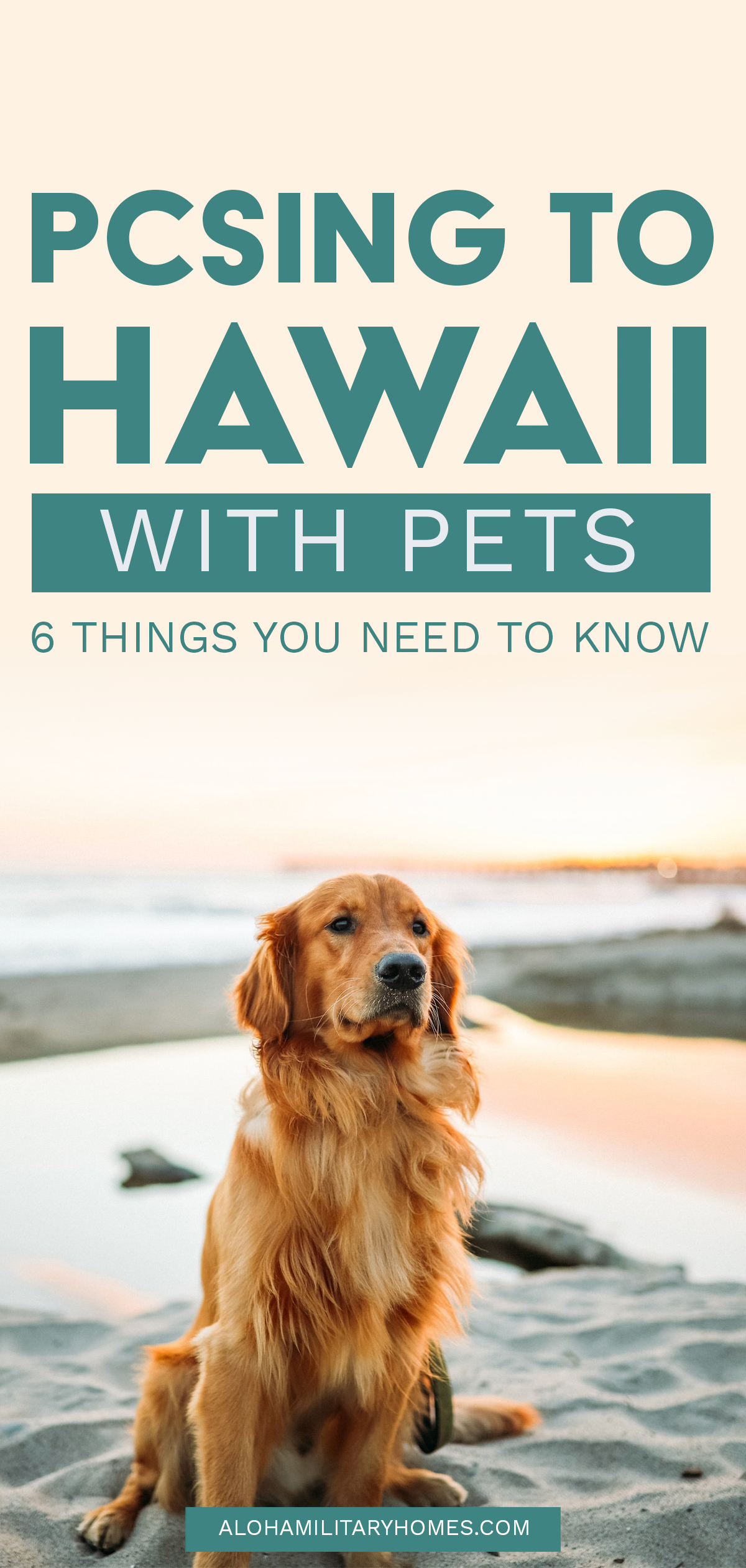 PCSING TO HAWAII WITH PETS. 6 Things you need to know if