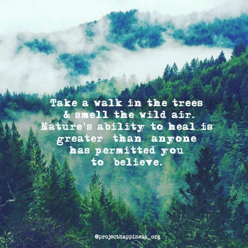 Hiking Quotes Enchanting Pinalayna Grab On Quoteables  Pinterest  Wisdom Nature