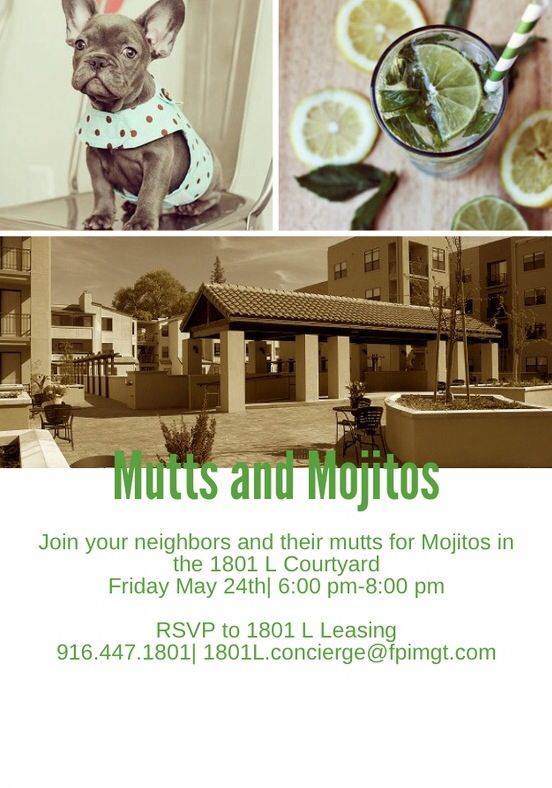 Mutts and Mojitos 1801 L