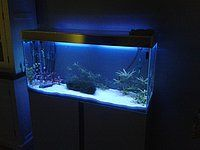 Kleurrijke aquarium led verlichting bedienbaar met afstandsbediening ...