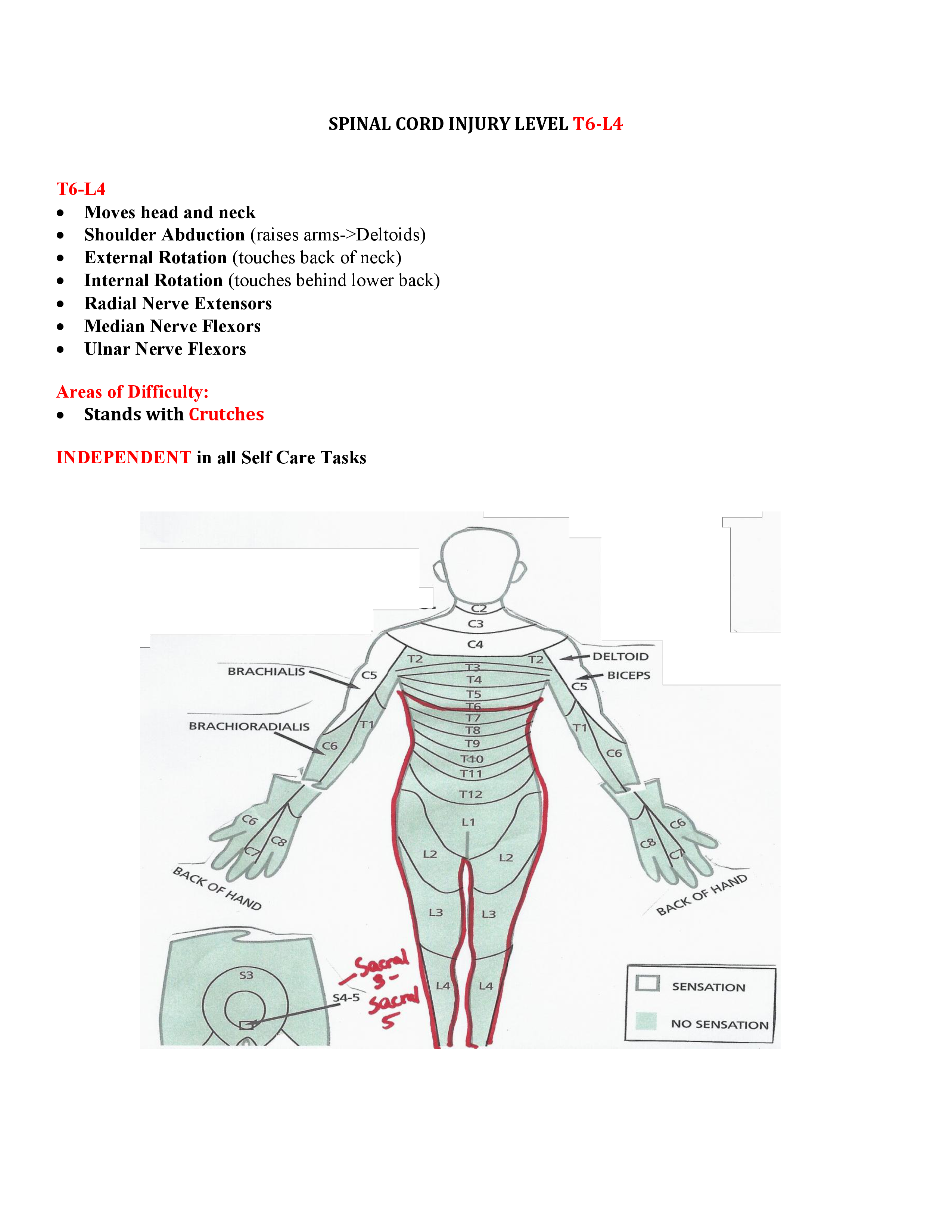 Spinal Cord Injury Level T6 L4