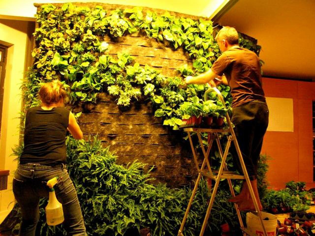 Living Wall Make Your Own. living walls bring container gardening ...