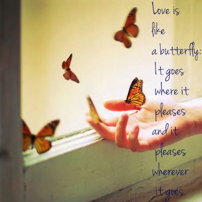 Butterfly Quotes About Life Many Wise Words About Life Including