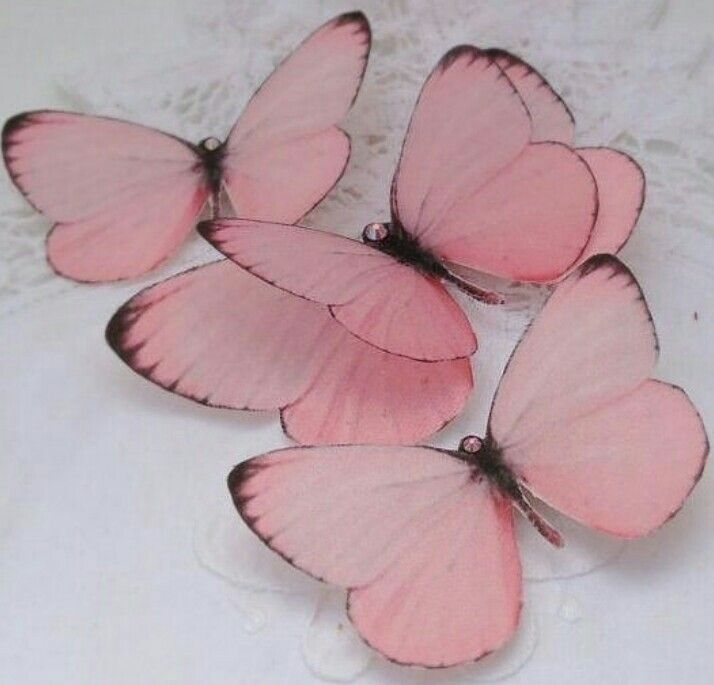 Dp or Wallpaper for Girls | Butterfly hair clip, Butterfly ...