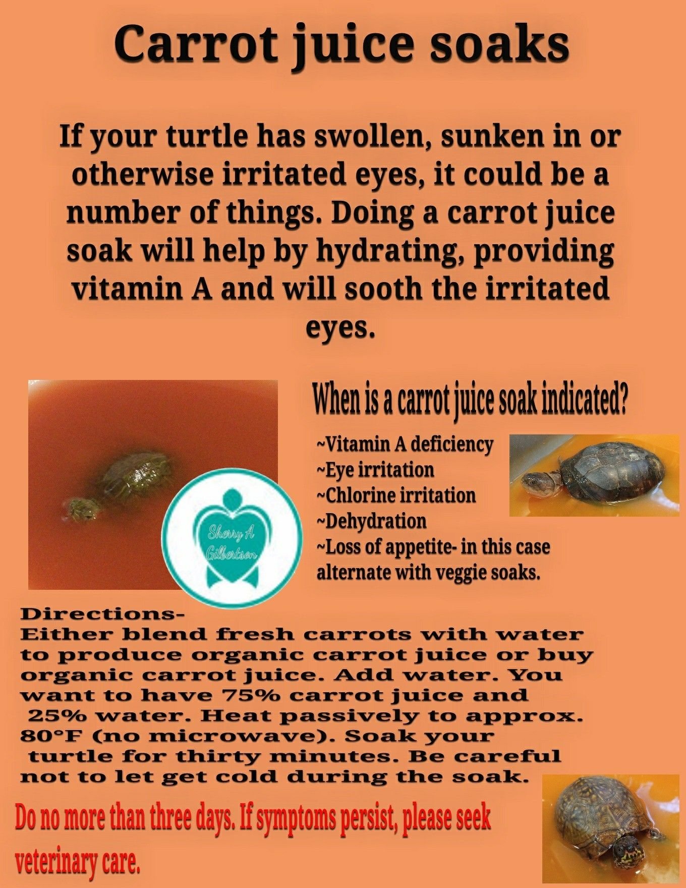 Carrot Juice Soak For Turtle Tortoise Turtle Care Pet Turtle Yellow Bellied Slider