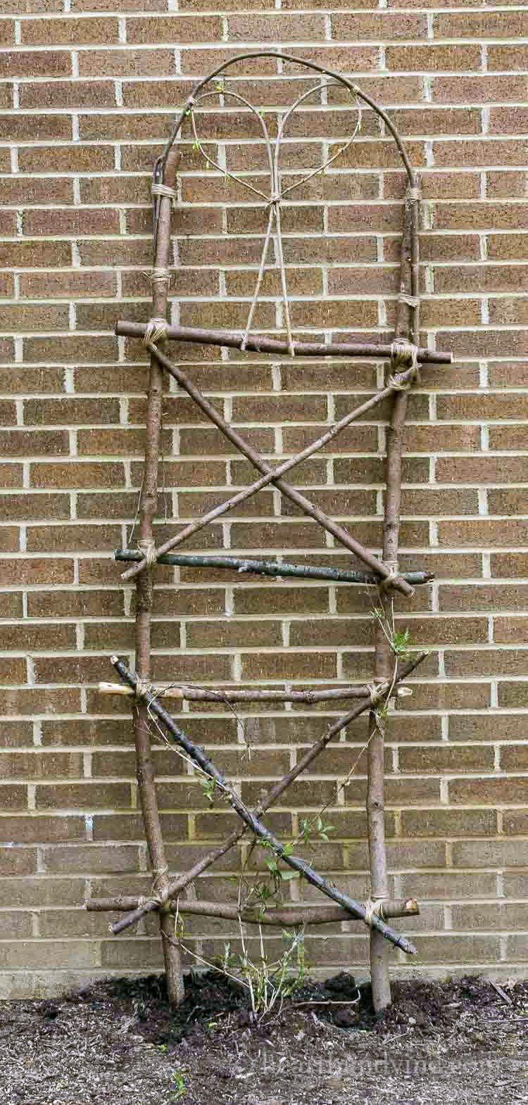 garden canes aldi GardenVines Garden projects, Garden