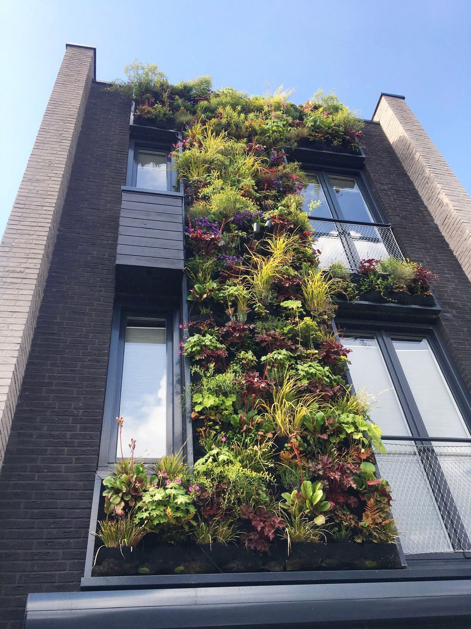 The Vertical Planting Company Amsterdam Florafelt Living Wall Systems Vertical Garden Garden In The Woods Vertical Planting