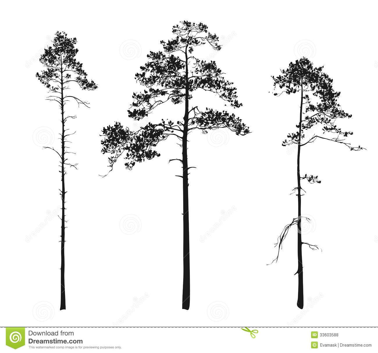 pine tree silhouette - Google Search | Tattoo | Pinterest | Bonsai ...
