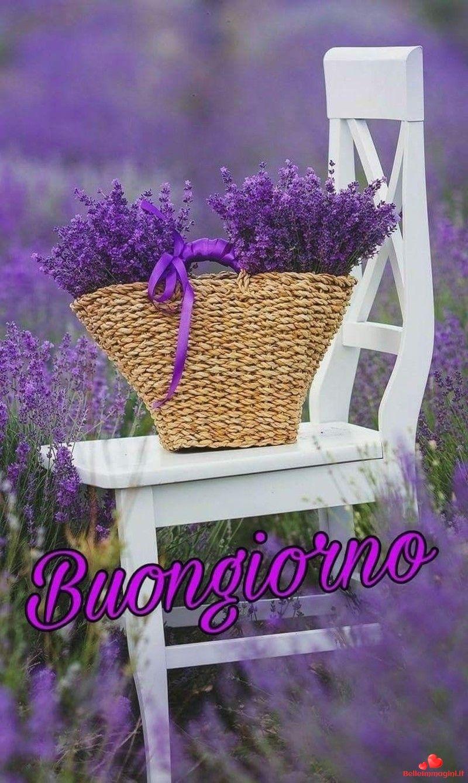 Immagini bellissime di buongiorno caff per whatsapp da for Foto buongiorno gratis