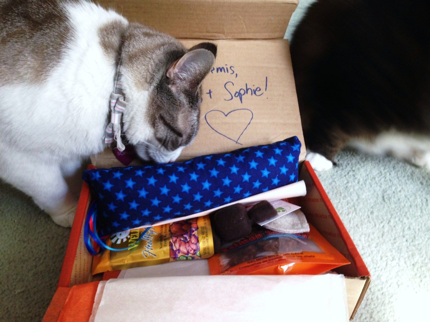 Meowbox August 2014 Review Handmade cat toys, Cat