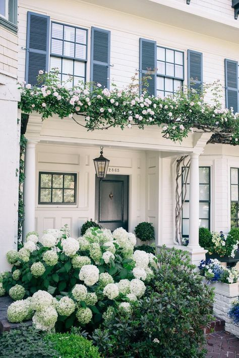 Puffy Hydrangeas In Front Of The Most Beautiful Home Porch Garden Exterior House Exterior