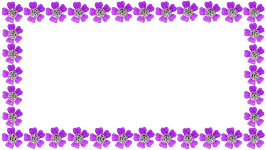 Beautiful Violet Borders And Frames