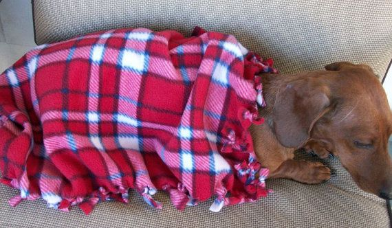 Red Plaid Doggie Chewing Blanket by MuttMania on Etsy, $10.00